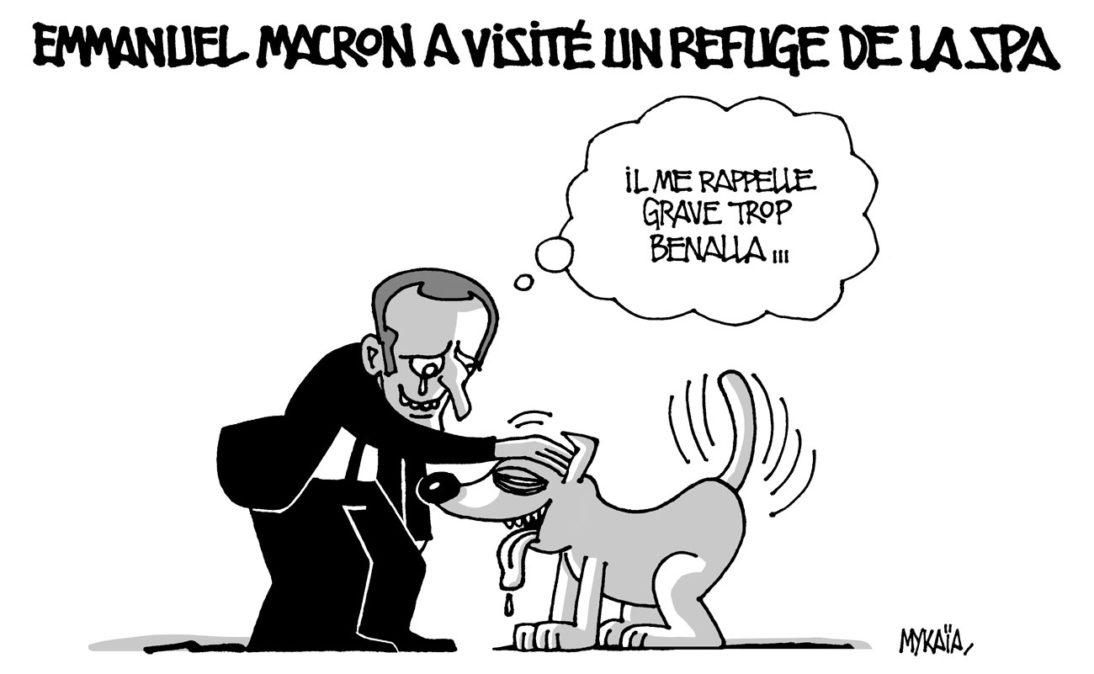 Emmanuel Macron visite un refuge de la SPA